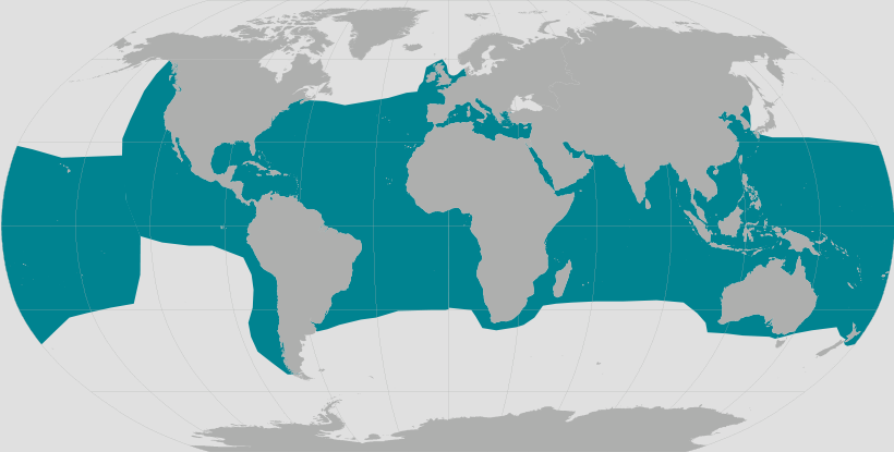Green sea turtle range map.