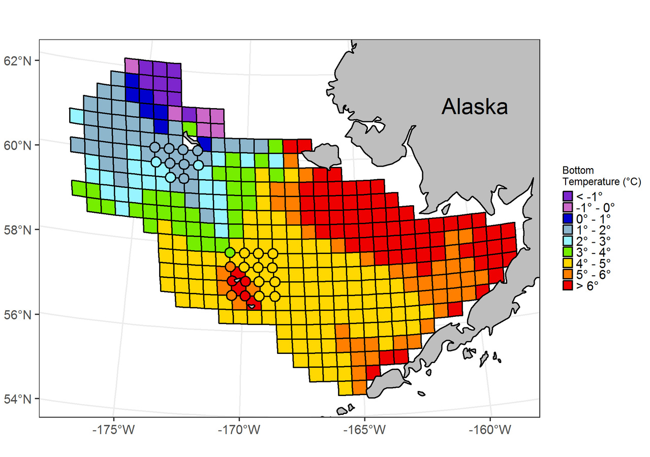 Ocean bottom temperatures during 2016 Eastern Bering Sea Shelf Bottom Trawl Survey.