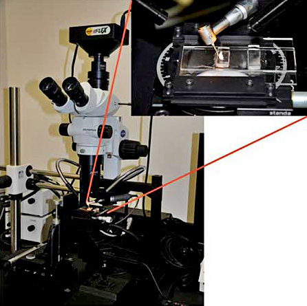 Pacific_Cod-micromilling-system.jpg