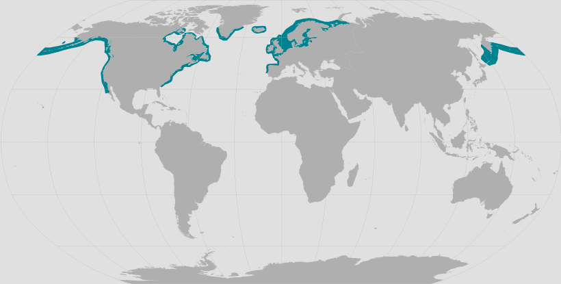 Harbor seal range map.