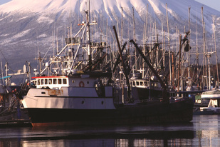 Commercial fishing vessels in the port of Sitka, Alaska