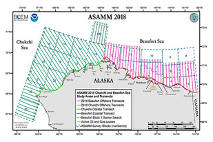 2018 ASAMM Chukchi and Beaufort Sea Study Areas and Transects.