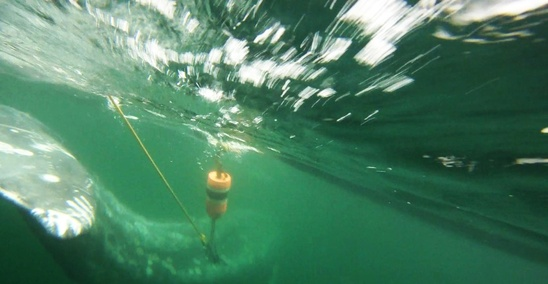 underwater_right_side_with_grapple_placement_and_buoy_lightened_CROP.jpg