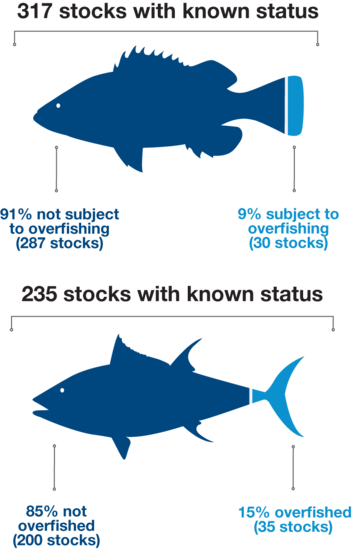 Graphic showing percentage of stocks that are overfished or subject to overfishing.